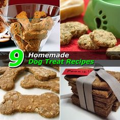 9 Homemade Dog Treat Recipes
