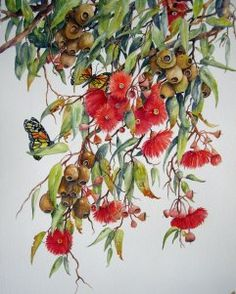 'Locally Inspired' is a large watercolour X on Arches paper. Botanical Art, Pet Birds, Planting Flowers, Floral Wreath, Wildlife, Wall Art, Painting, Animals, Inspiration