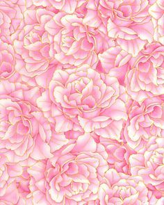 background rose pink - Buscar con Google