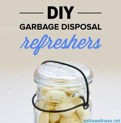 if your waste disposal isnu0027t really as fresh as it ought to bethen this diy homemade garbage disposal refreshers is the best tested and proven solution for - Garbage Disposal Cleaner