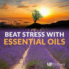 Top 17 Best Essential Oils for Stress and Anxiety - And How to Use Them