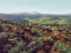 """Untitled (Grand Lookout.) A sweeping view of fall foliage blanketing a Vermont landscape. This original pastel painting is 15""""W x 11 3/16""""H. Purchase it along with giclée prints at my website."""