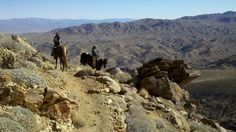 Take a horseback ride with Smoke Tree Stables. Palm Springs.
