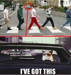 I laughed wayyyy to hard at this! How many points is one direction worth?? Hahahahaha