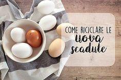 L'articolo Come riciclare le uova scadute proviene da Ricette della Nonna. Per scadute intendiamo naturalmente uova dimenticate in frigorifero per almeno 1 settimana o 2 settimane oltre la data di sca