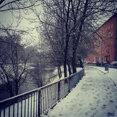 Olomouc in prints