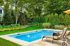 Small rectangular inground pool designs with landscape
