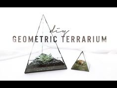 DIY GEOMETRIC GLASS TERRARIUM | THE SORRY GIRLS - YouTube