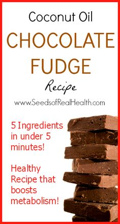 Coconut Oil Chocolate Fudge Recipe - www.SeedsOfRealHealth.com