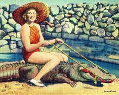 Items similar to Woman Riding Alligator Photograph, Retro Decor, Vintage Beach Photograph, Vintage Beach Decor, Fun Summer Art Aqua Coral on Etsy