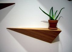 Google Image Result for http://www.newyorkmarkt.com/wp-content/uploads/2011/07/Angle-Shelf-Eco-Friendly-Bamboo-Home-Interior-Furniture-ALS-Designs-Brooklyn-NYC-590x432.jpg