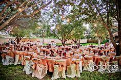 Beautiful outdoor wedding at Los Patios httpwwwldoweddingscom