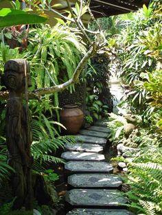Bamboo garden in the backyard?