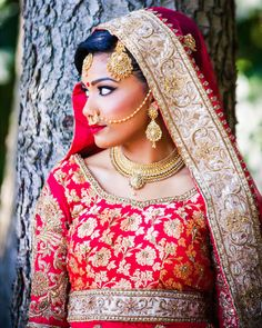 Nose ring on pinterest nose rings bridal lehenga and indian