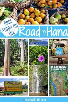 The Ultimate Guide to Maui Hawaii's Road to Hana Stops. The best banana bread, waterfalls, black sand beaches, and how to drive the Road to Hana with kids. #roadtohana #mauihawaii #maui #familytravel #familyvacation #hawaii #travelswitheli Hawaii Vacation Tips, Hawaii Travel, Travel With Kids, Family Travel, Road To Hana, Best Banana Bread, Black Sand, Maui Hawaii, Hawaiian Islands