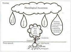 Phonological Awareness v. Phonemic Awareness