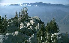One of my favorite backpacking spots.  Looking at San Gorgonio from San Jacinto Peak.