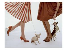 A-lines & chihuahuas. Vogue February 1959 by William Bell.