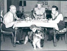 Lucille Ball, Desi Arnaz, William Frawley and Vivian Vance ~ The Diet