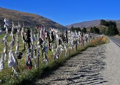 The Cardrona Bra Fence  Located in Central Otago,
