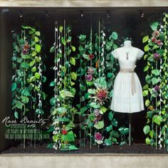 Earth Day, Our Way: Recycled Rainforest Windows - Anthropologie Blog
