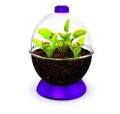 The WonderBubble is ideal for creating amazing displays or for growing Plants and Herbs. Great for hobbies, crafts. Perfect for creating dioramas for displaying almost anything including Zen Rock Gardens and Desert Terrariums. The completely clear