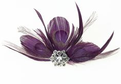 Plum Feather Clip Decoration from Lillian Rose.  Perfect as a hair accessory or to decorate any of your wedding accessories.