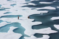 The arctic - Ponds on the Ocean - photo from NASA, via Flickr.