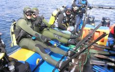 Scuba Dive Cape with Alpha Dive Centre Dive Shops and School. Take your scuba diving gear, swim with seals in the Atlantic or explore wrecks in False Bay. Dive Shop, Scuba Diving Gear, Cape Town, Festivals, Swimming, Ocean, Events, Explore, Gallery