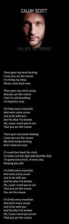 Calum Scott you are the reason lyrics
