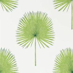 Sanderson Fan Palm | Perigold Palm Wallpaper, Green Wallpaper, Wallpaper Online, Print Wallpaper, Home Wallpaper, Fabric Wallpaper, Wallpaper Roll, Pattern Wallpaper, Luxury Wallpaper