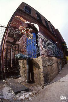 Rob Pluhowski - Ollie. Brooklyn, NY