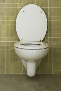 Productos caseros y no tóxicos para limpiar el inodoro