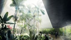 CHROFI won the competition with its proposal to create a conservatory raised above the ground, and wrapped in layers of transparent and translucent glass to offer an ideal tropical environment.