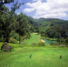 The hole at The Experience at Koele, Lanai, Hawaii - perfect for players to practice their swing Public Golf Courses, Best Golf Courses, St Andrews Golf, Augusta Golf, Golf Course Reviews, Golf Instruction, Golf Lessons, World's Most Beautiful, Lanai