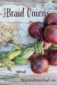 How to Braid Onions-- because braided onions look awfully cool and pioneer-ish hanging in your kitchen. :)