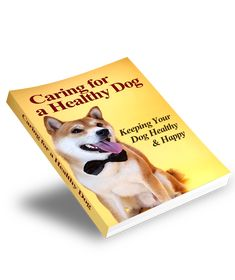 Perfect Handbook For Imperfect Dog Owners Pet Health Insurance, Sick Dog, Dogs For Sale, Dog Signs, Dog Quotes, Dog Training Tips, Dog Grooming, Fleas