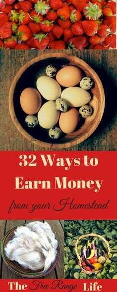 Do you want to become self-sufficient financially? Here are 32 Ways to Earn Money from Your Homestead to help you supplement your household income
