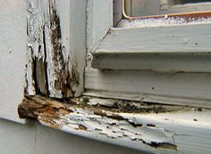 How to repair dry rot damage in a sill or frame and avoid having to replace the entire window.