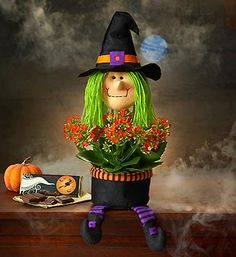 Even our 1800flowers plants are getting dressed up in Halloween costumes! This orange kalanchoe plant comes in a fun witch planter!