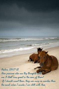 Psalms 139:17-18 How precious also are thy thoughts unto me, O God! how great is the sum of them!  If I should count them, they are more in number than the sand: when I awake, I am still with thee.