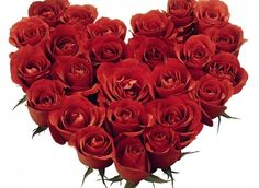 Rose Day, Images, Happy Rose Day, Quotes, Wishes, SMS, rose