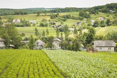 CLICK THIS PIN to see more photos from Ukraine, Landscape of Western Ukrainian Village Hostiv.