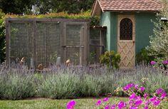 Best Edible Garden Finalist in the 2015 Gardenista Considered Design Awards Love the paint color and door design on this shed. Veg Garden, Edible Garden, Home And Garden, Garden Sheds, Garden Houses, Dream Garden, Landscape Architecture, Landscape Design, Garden Design