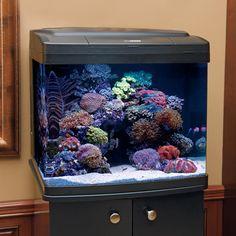 reccomended quarentine tank - Coralife BioCube Aquarium Systems