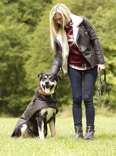 53 Best Barbour Dogs Images Barbour Jacket Coats For Dogs Dog Coats