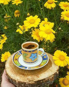 Coffee Love, Coffee Art, Coffee Cups, Tea Cups, Good Evening Greetings, Good Night Image, Espresso Cups, Happy Day, Good Morning