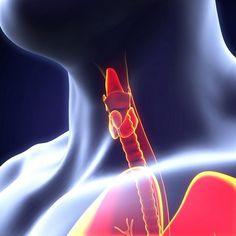 Cuales son las dolencias más comunes de la  #tiroides