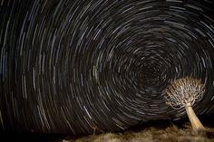 Kakamas night sky, South Africa. Photographer: Francois Loubser
