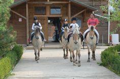 Caii nostri, atractia tuturor copiilor! www.horseland.ro